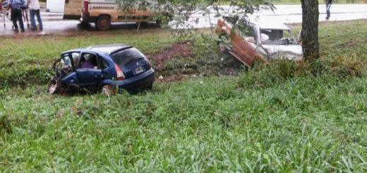 Una mujer, sus tres hijos y una amiga de la familia murieron en un choque frontal en Montecarlo