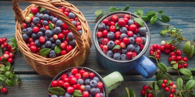 ¿Qué aportes nutricionales tienen los arándanos? Conócelos e incorpóralos a tu dieta