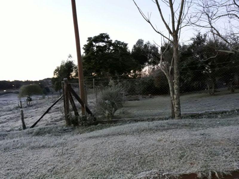Mirá las fotos y videos de las heladas provocadas por el intenso frío en Misiones
