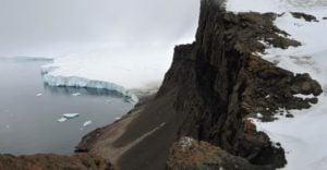 """Cambio Climático: El deshielo y la biodiversidad terrestre de la Antártida provocará una """"guerra"""" de especies"""