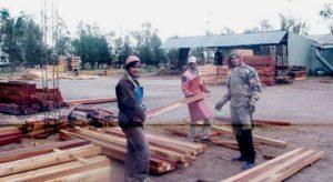 Chaco: El gobierno provincial anunció medidas para reactivar el sector forestal