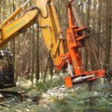 Presentaron la 12° Feria Forestal Argentina que se desarrollará en septiembre