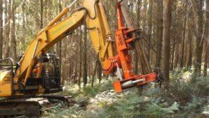 Importadores y fabricantes de maquinaria forestal estarán presentes en la mayor exposición del sector de Misiones