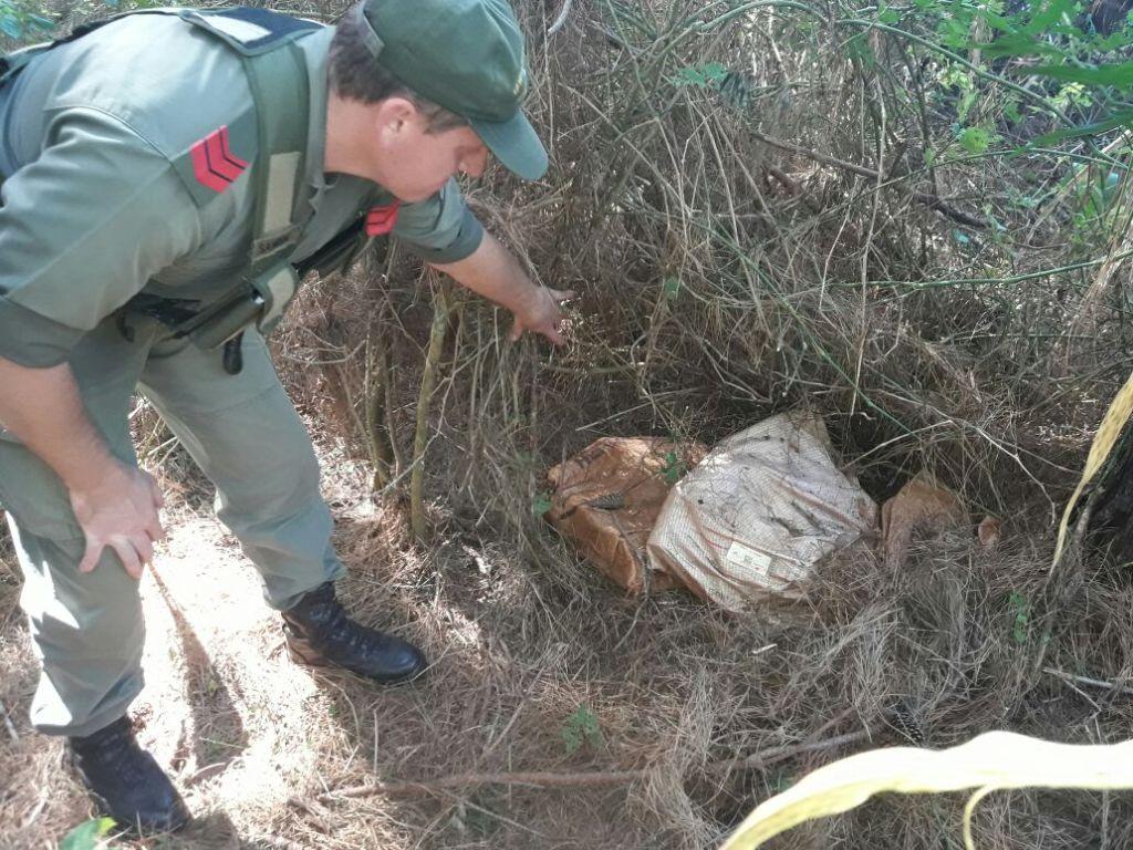Traficantes abandonaron 34 kilos de marihuana al ser descubiertos por la Gendarmería en Puerto Rico