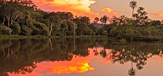 Una reserva con historia en conservación en tierras privadas