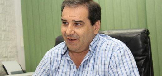 Yerba Mate: Garay criticó fuertemente la decisión del INYM de habilitar la cosecha en septiembre