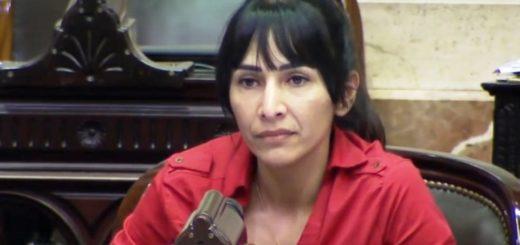 Cristina Brítez, la única misionera presente que votó a favor de Julio De Vido