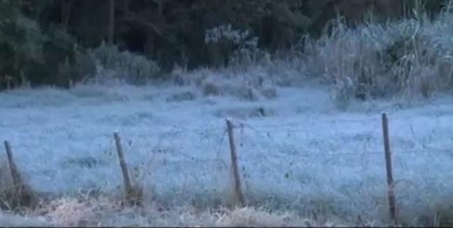 El Inta de Cerro Azul registró este martes -8°, la temperatura más baja después de 42 años
