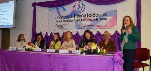"""Se realizaron en Posadas las IV Jornadas Perinatológicas """"Por una maternidad Segura y Orientada a la Familia"""""""