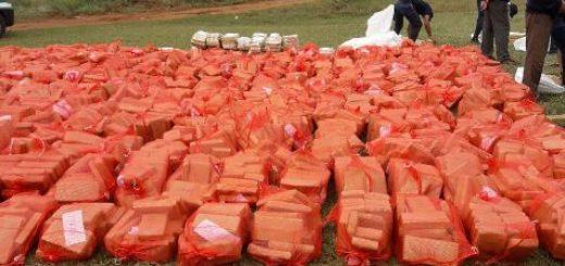Queman más de 10 toneladas de marihuana incautada en Misiones