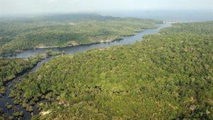 La justicia brasileña frenó el decreto de Temer para explotación minera en reservas del Amazonas