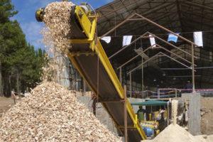 Entre Misiones y Corrientes se moviliza más de 14 millones de toneladas de biomasa forestal por año