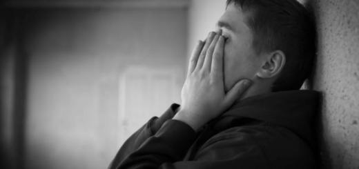 """Un chico vegetariano víctima de bullying en San Luis: le gritaban """"Lechuga, marica"""""""