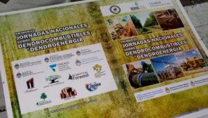 Referentes de España, Finlandia, EEUU y México disertarán en Sáenz Peña sobre bioenergía, el 16 y 17 de agosto