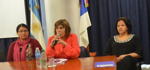 El Consejo Nacional de las Mujeres insta a que se aplique la Ley 26.485 en el caso de Victoria Aguirre