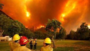 """INTA: Investigación registró un aumento temporal de incendios """"intencionales"""" provocados con el fin de dar uso productivo a un área restringida"""