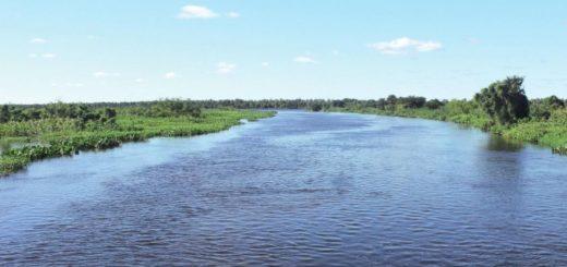 Pantanal paraguayo busca convertirse en Patrimonio Natural de la Humanidad ante la UNESCO