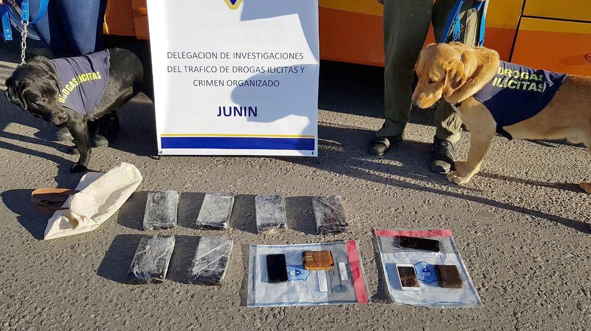 Detectan banda que llevaba cocaína de Misiones a Buenos Aires: entre los detenidos está el hermano del ex futbolista Antonio «Chipi» Barijho