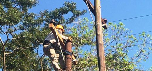 Emsa realiza trabajos para reemplazar conductores y líneas de media tensión en Posadas