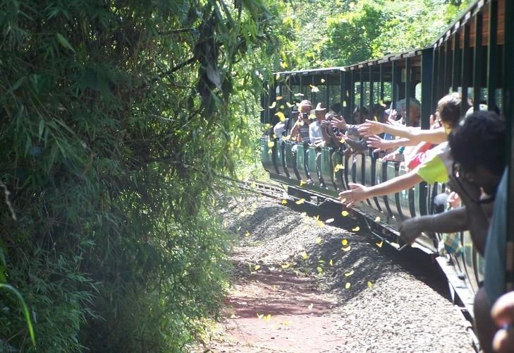 Efecto Maravilla: anuncian millonarias obras para mejorar los servicios en el Parque Nacional Iguazú