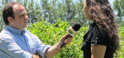 Hoy es el día del Periodista Agropecuario