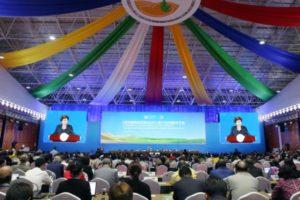 COP13: El Papa Francisco en mensaje a la Cumbre ONU elogia los esfuerzos contra la crisis ambiental