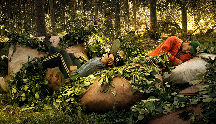 «Raídos», el documental que retrata la vida de los tareferos en Misiones, se presenta oficialmente en la tierra colorada