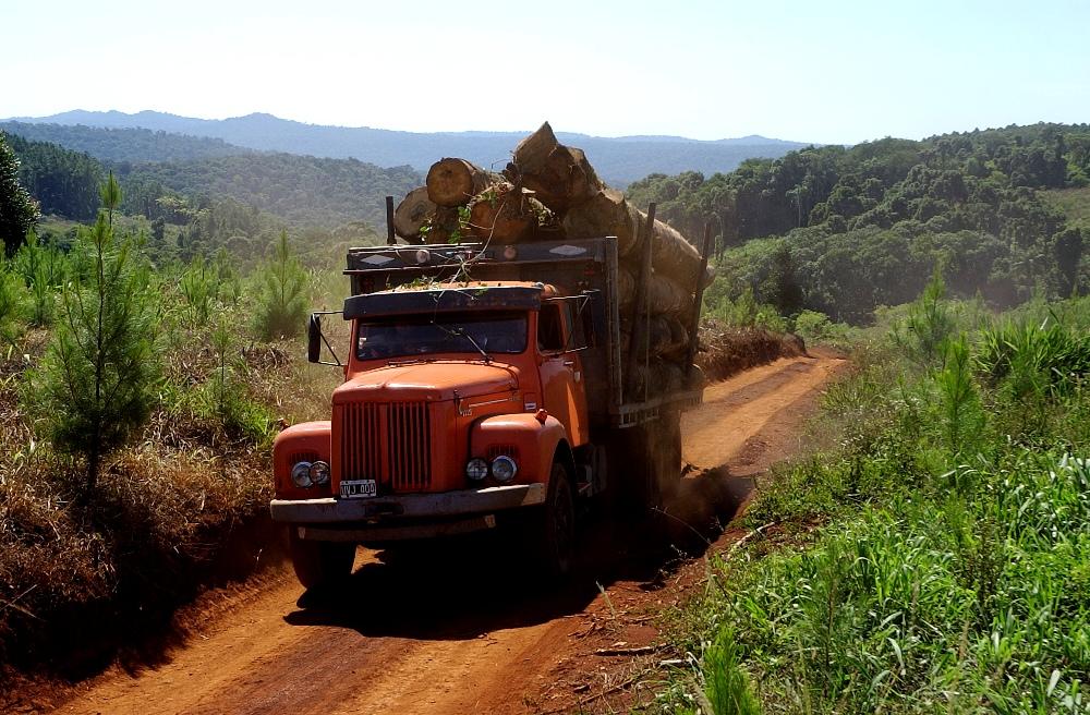 El enfoque del paisaje como estrategia de conservación, usos de suelos agropoductivos y protección del ecosistema