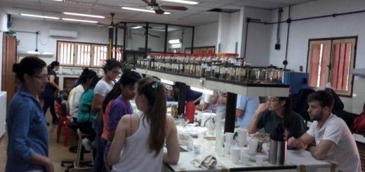 Alto interés de jóvenes estudiantes en conocimientos de producción de plantas de especies nativas