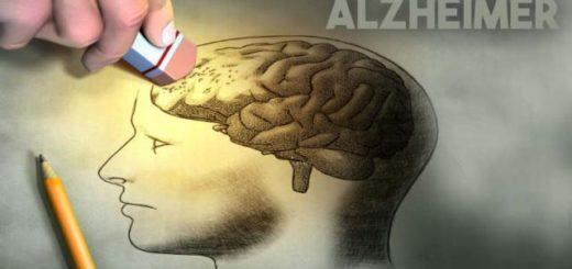 Realizarán actividades de promoción en la Plaza 9de julio por el día Mundial del Alzheimer