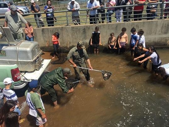 A las 11 habrá suelta de peces en el club Pirá Pytá