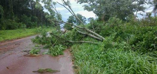 No se descarta que un tornado haya afectado ayer la zona de San Pedro