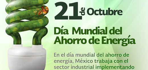 Hoy se recuerda el Día Mundial del Ahorro de Energía