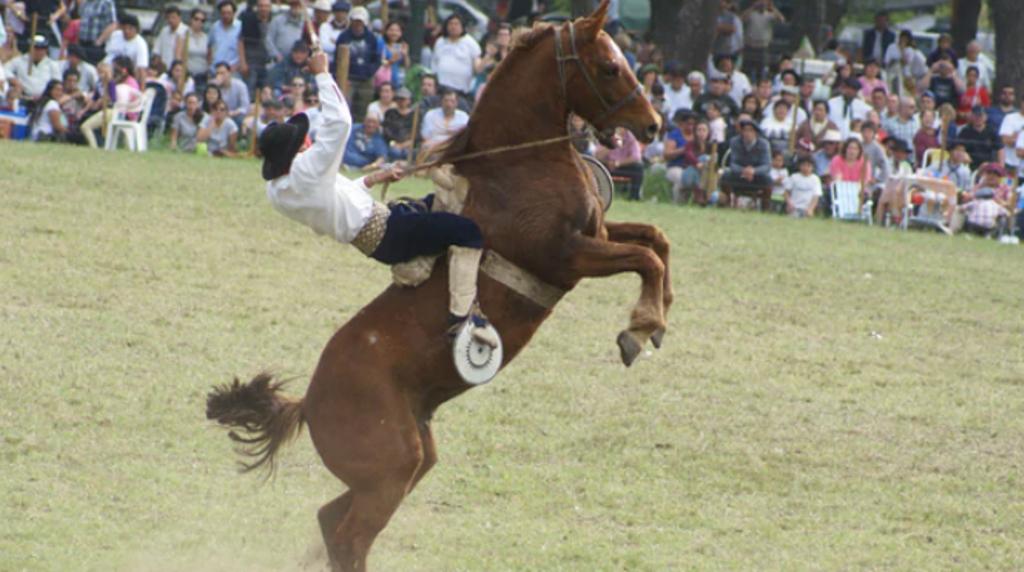 El Gobierno promulgó la fiesta nacional del caballo y otras seis conmemoraciones