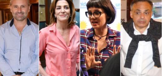 Los famosos en la política: los ganadores y perdedores que dejó esta elección