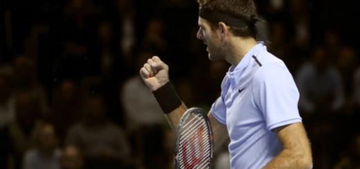 Basilea: Del Potro pasó a la final del ATP 500 al vencer a Cilic