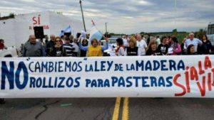 La Asamblea de Gualeguaychú advirtió sobre su rechazo a nuevos proyectos de pasteras en Uruguay y en Entre Ríos