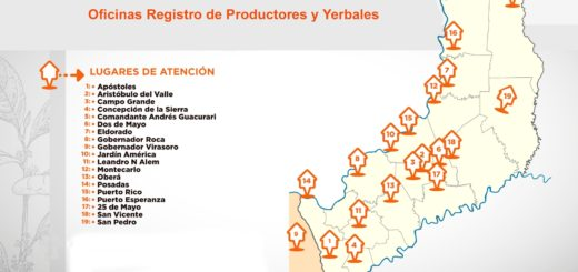 Registro de productores y yerbales: las oficinas permanecerán abiertas hasta fin de año