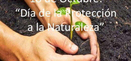 Hoy se celebra el Día de la Protección a la Naturaleza en varios países del mundo