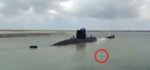 """Submarino desaparecido: """"Comando"""" el perro mimado de la misionera Eliana Krawczyk, cada vez que el submarino zarpaba de la base naval, nadaba para despedirlo"""