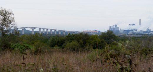 """Osvaldo Vassallo: """"Las exigencias ambientales deben aplicarse a todas las industrias, la contaminación no es excluyente a la Celulosa y Papel"""""""