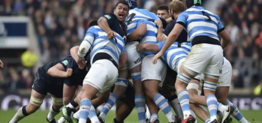 Rugby: comenzó el partido entre los Pumas e Inglaterra