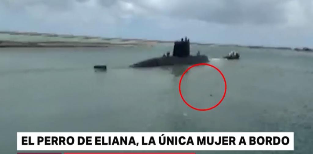 Historias que conmueven: el perro que se lanzaba al mar cada vez que Eliana zarpaba con el submarino