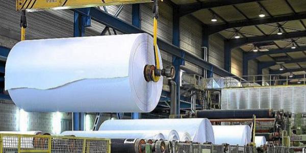 Tecnologías, legislaciones estrictas y controles eficientes, bases de políticas ambientales para el desarrollo sostenible de la industria de celulosa y papel