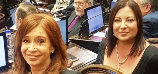 VIVO: juran los 23 nuevos senadores