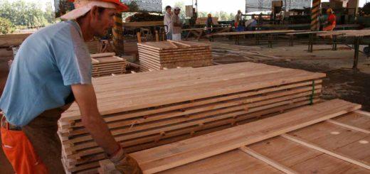 "Córdoba: madereros pidieron al gobierno un plan económico ""viable"" para poder pagar sueldos en abril"
