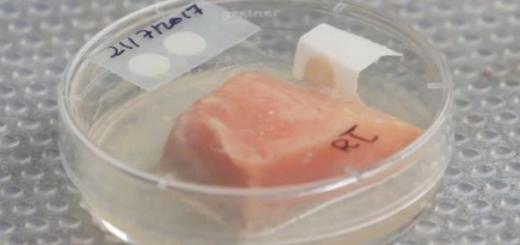 Etiquetas con sensores podrían decir cuándo caducan los alimentos