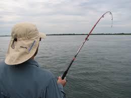 Recuerdan que rige la veda de pesca para los ríos Paraná y Uruguay