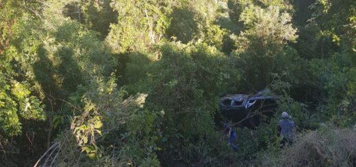 Un joven falleció tras despistar en la ruta 2, en Colonia Aurora