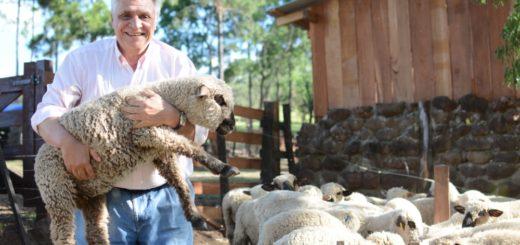 VISIÓN MISIONERA 2018: La Armonía apuesta a vender cortes ovinos congelados y platos gourmet de cordero que se pedirán en su restaurante o por Internet